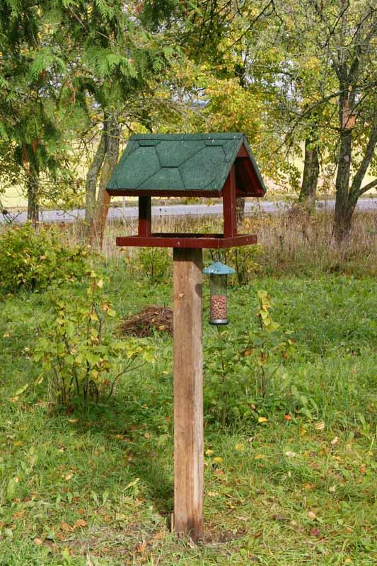 Bird_table,_garden.jpg