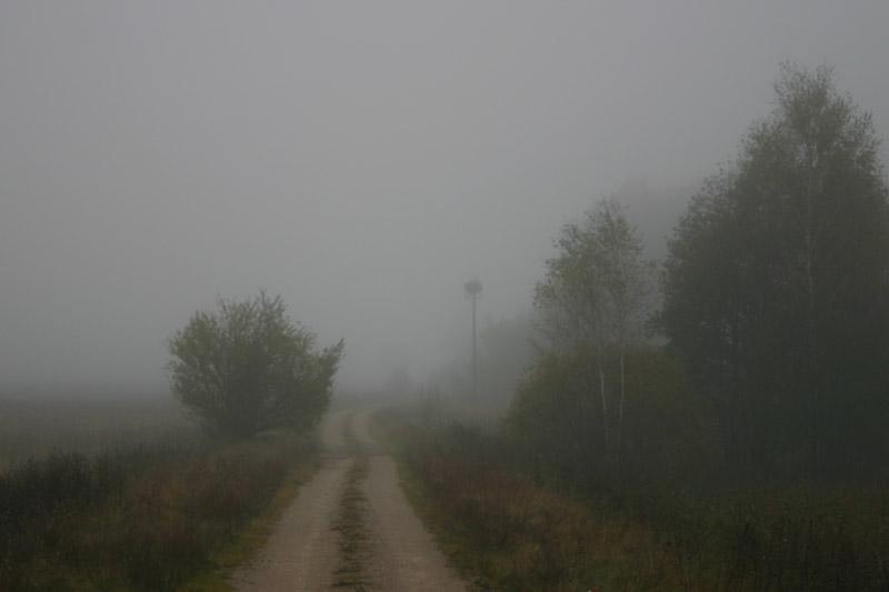 October_Gloom_thumb.jpg