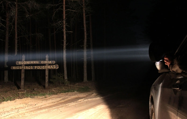 Spotlighting in Rudninkai Forest